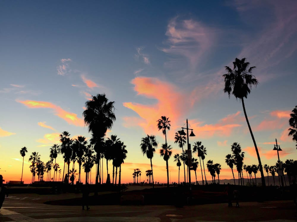 A Perfect 1-Day Venice Beach Itinerary (1 of 1)-8