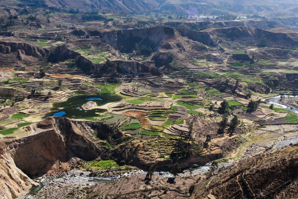 colca-valley-1-of-1