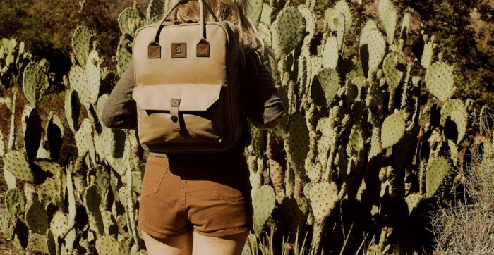 stylish camera bags for women - Langly in coyote