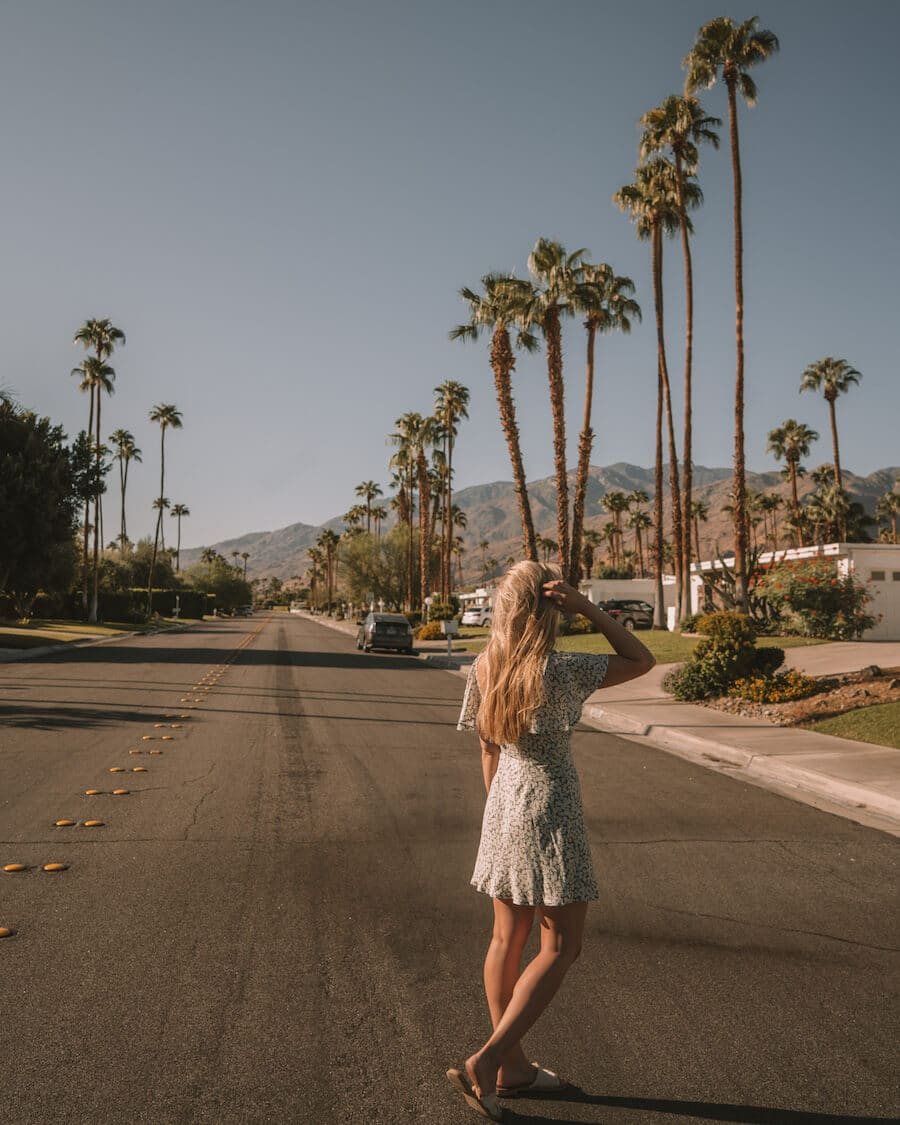 Palm tree lined streets in Palm Springs