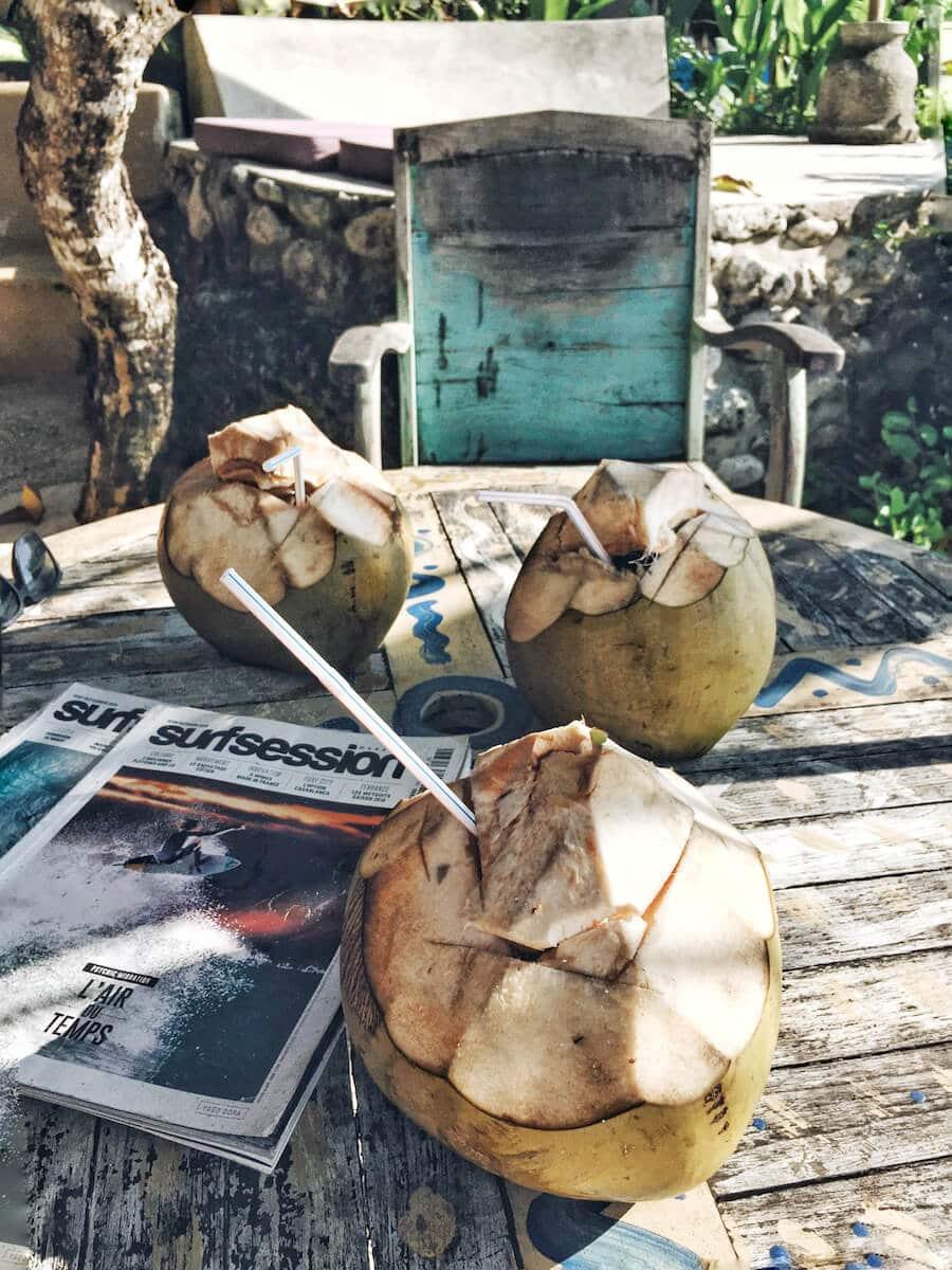 Coconuts in Bali, California