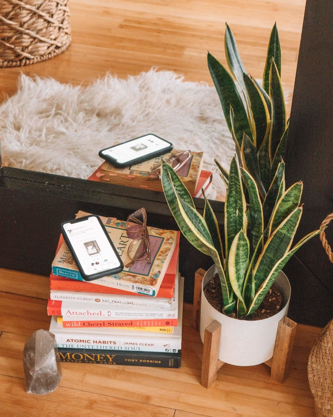 Stack of books next to a snake plant