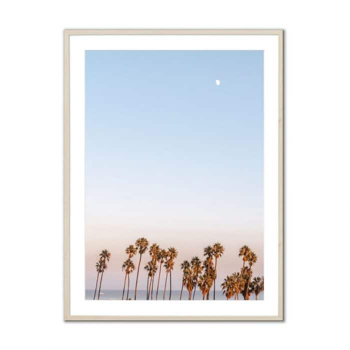 Fine art travel photography print of palm trees and moon