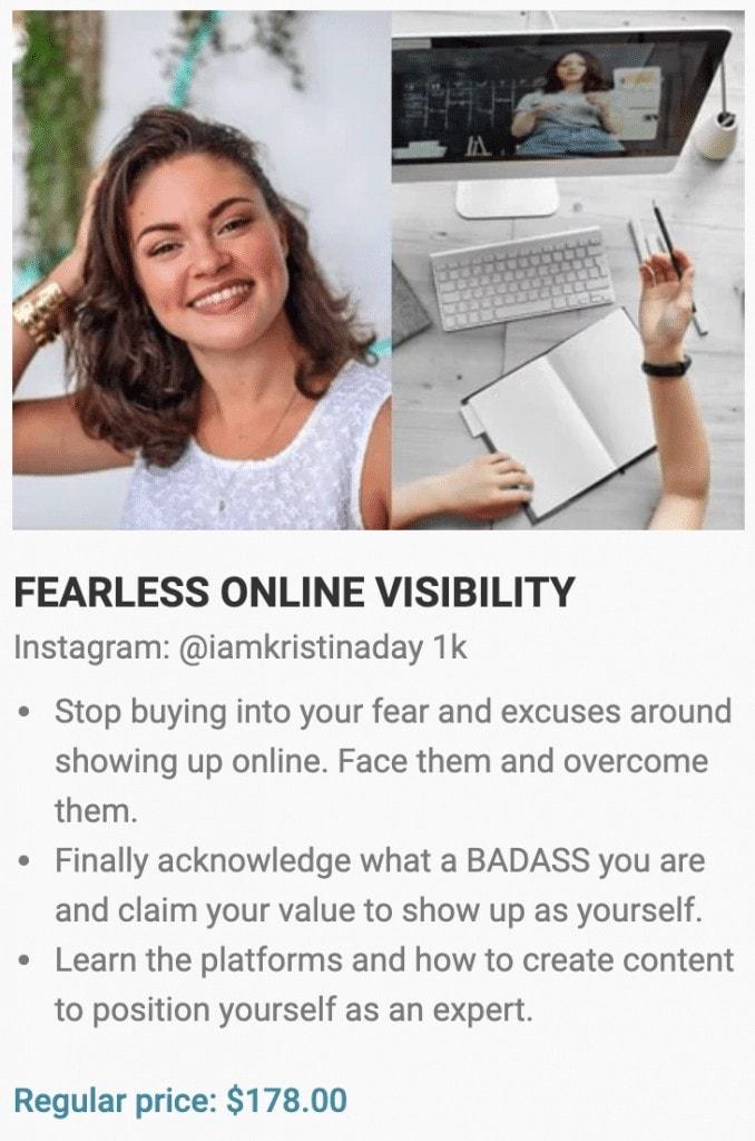 the online business bundle