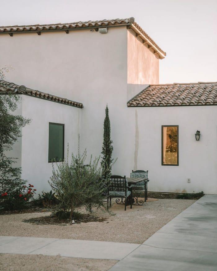 The Olive Plantation