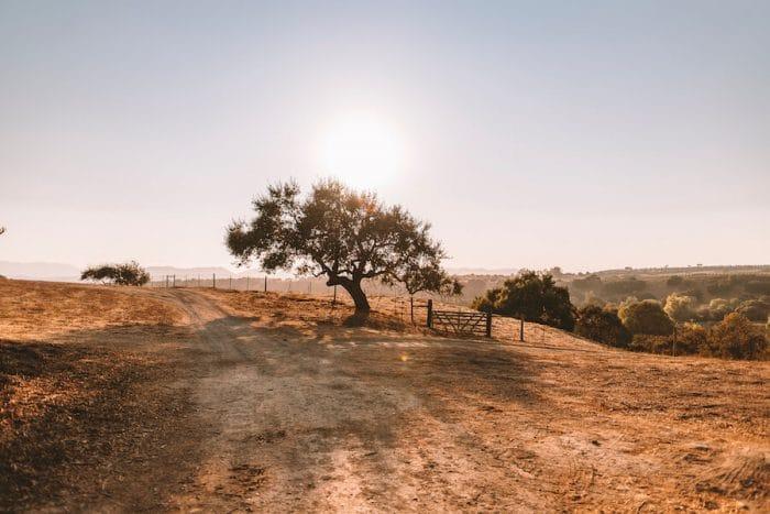 Golden hour over Santa Ynez Valley