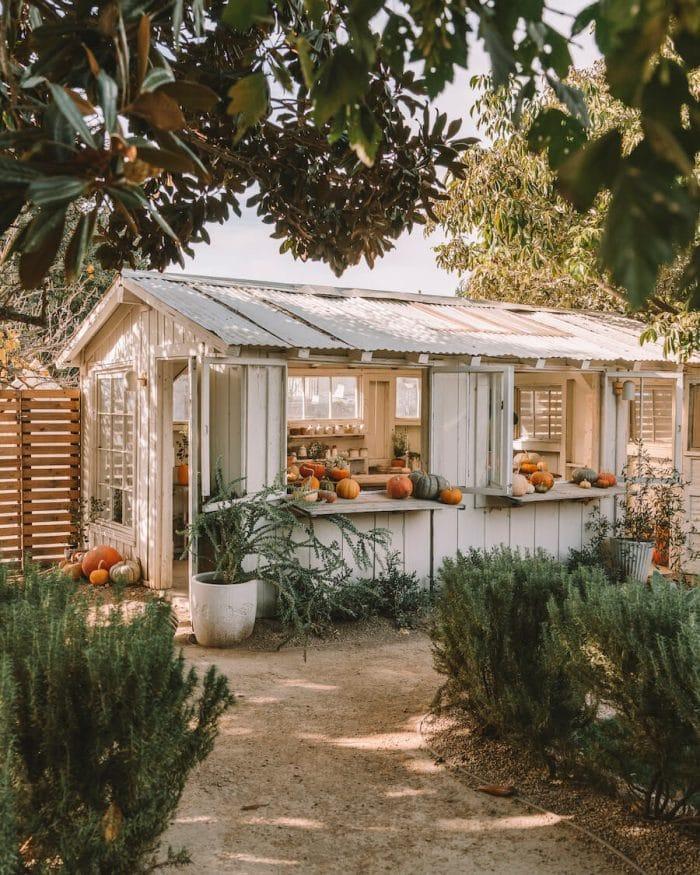 Greenhouse at Bodega Los Alamos