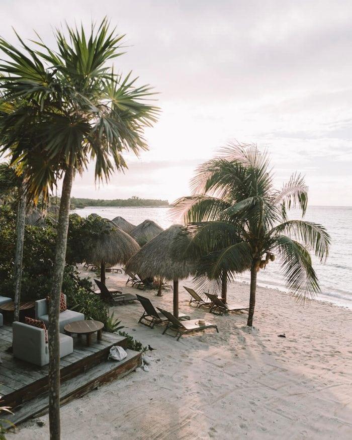 Beach views with palm trees at Jashita Hotel in Tulum