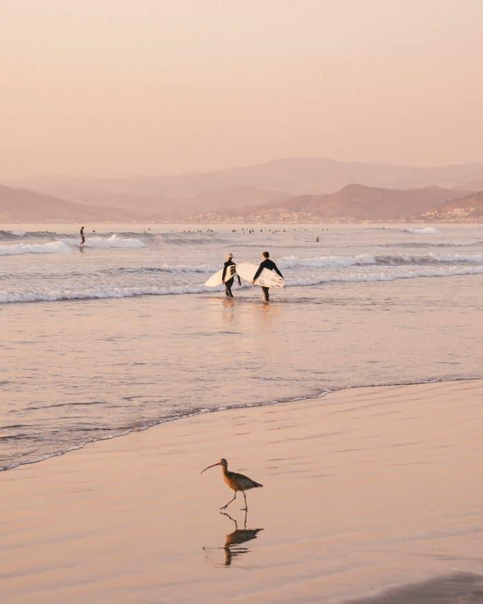 Morro Bay surfers