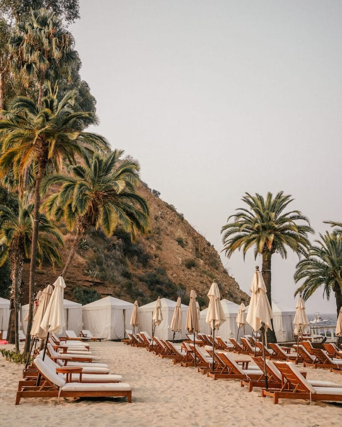 What to do in Catalina - Descanso Beach Club, Catalina