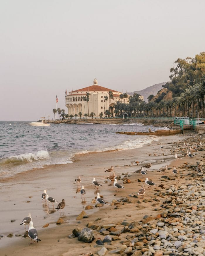 What to do in Catalina - Casino in Avalon, Catalina Island