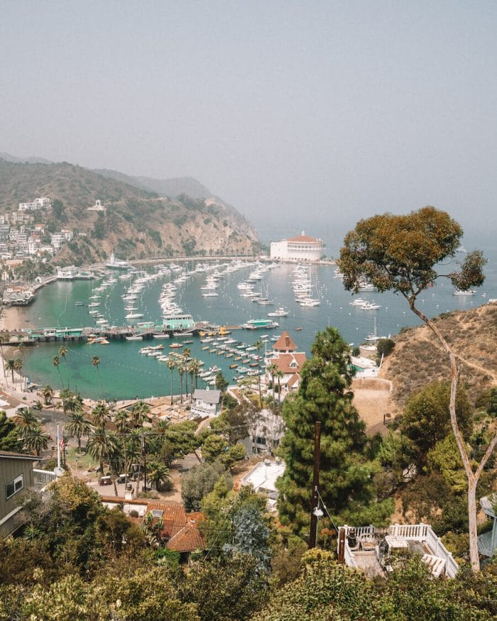 Overlooking Avalon Bay in Catalina