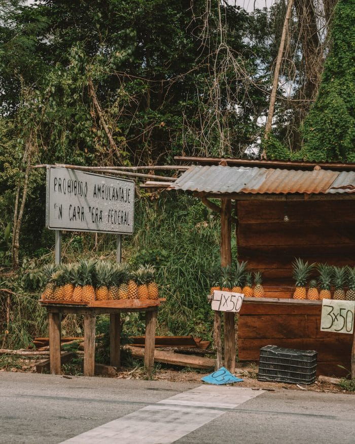 Pineapple stand on the way to the Bacalar Lagoon