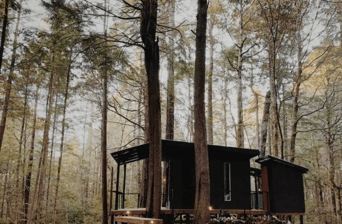 Unique places to stay in California - Elk, California