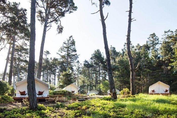 Mendocino Grove glamping tent