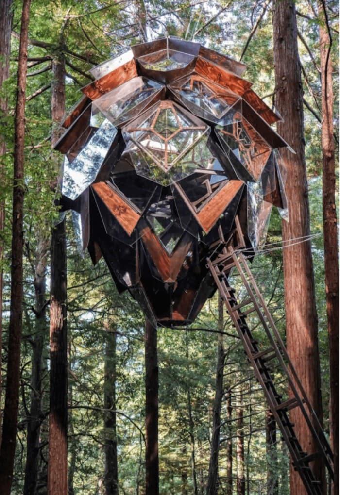 Pinecone treehouse