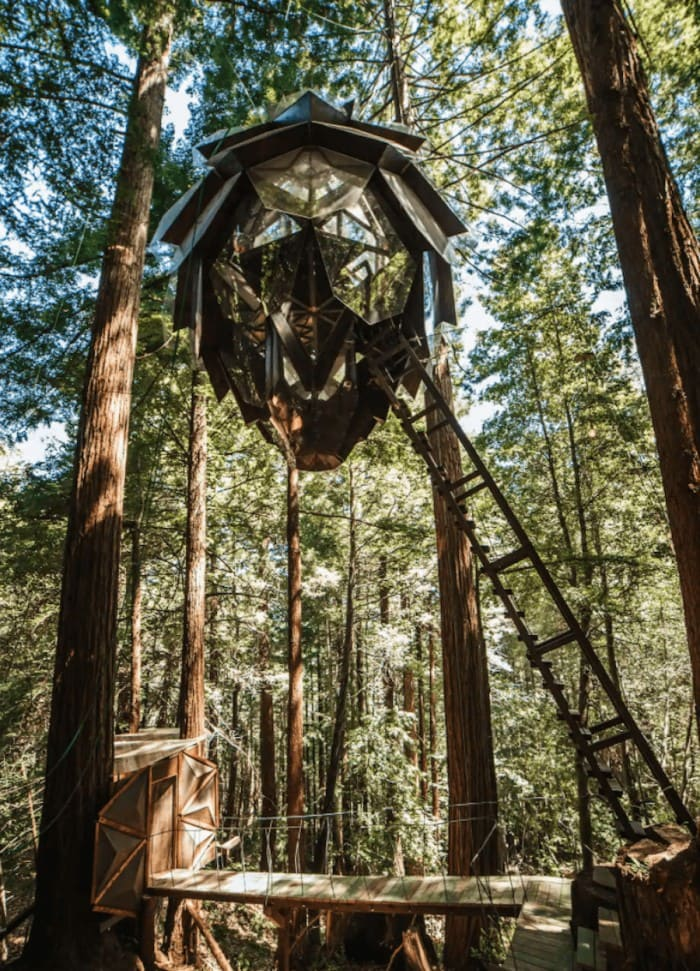 Unique places to stay in California - Pinecone treehouse