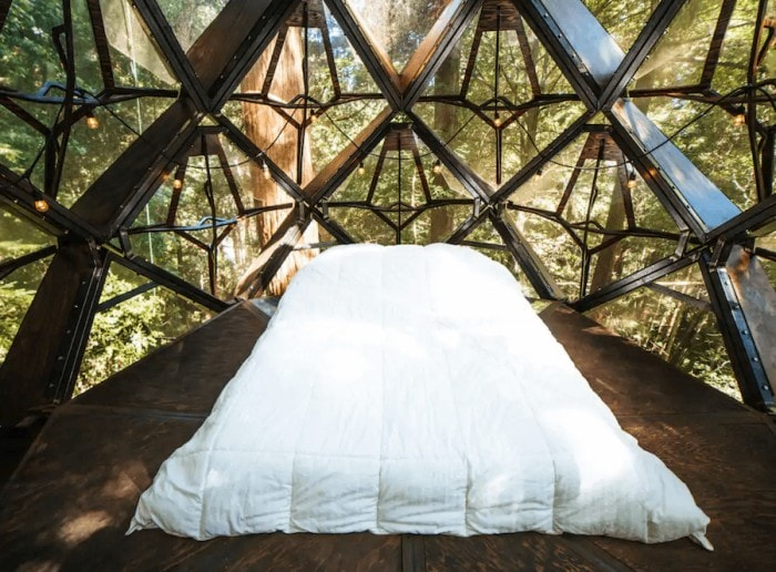 Bedroom in pinecone treehouse