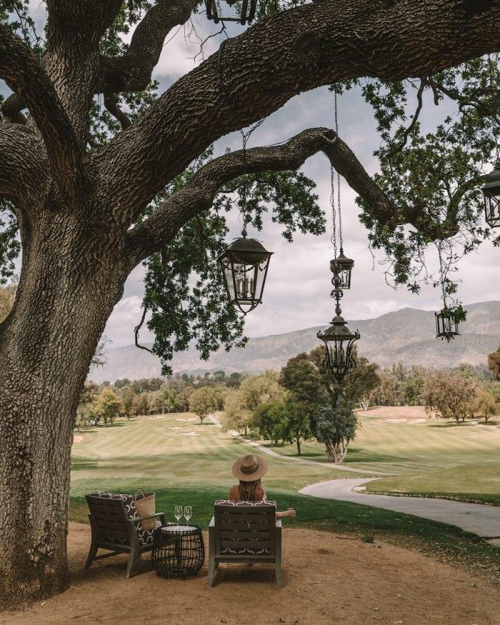 Under the lantern trees at Ojai Valley Inn