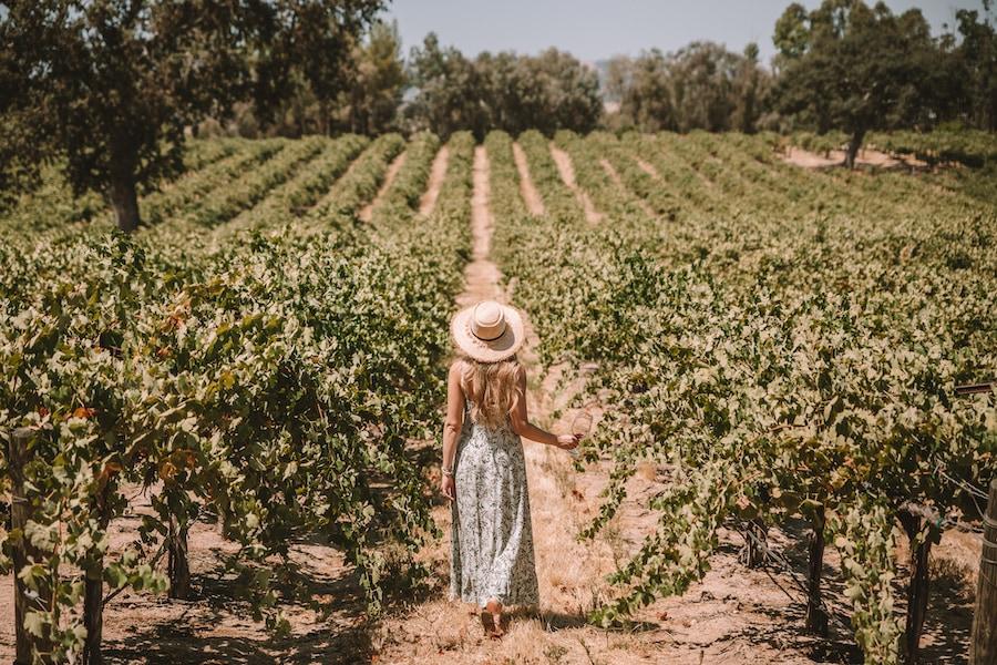 Girl standing in vineyard in Paso Robles