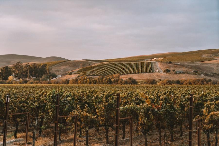 Los Alamos wine country - Weekend Getaways from Los Angeles
