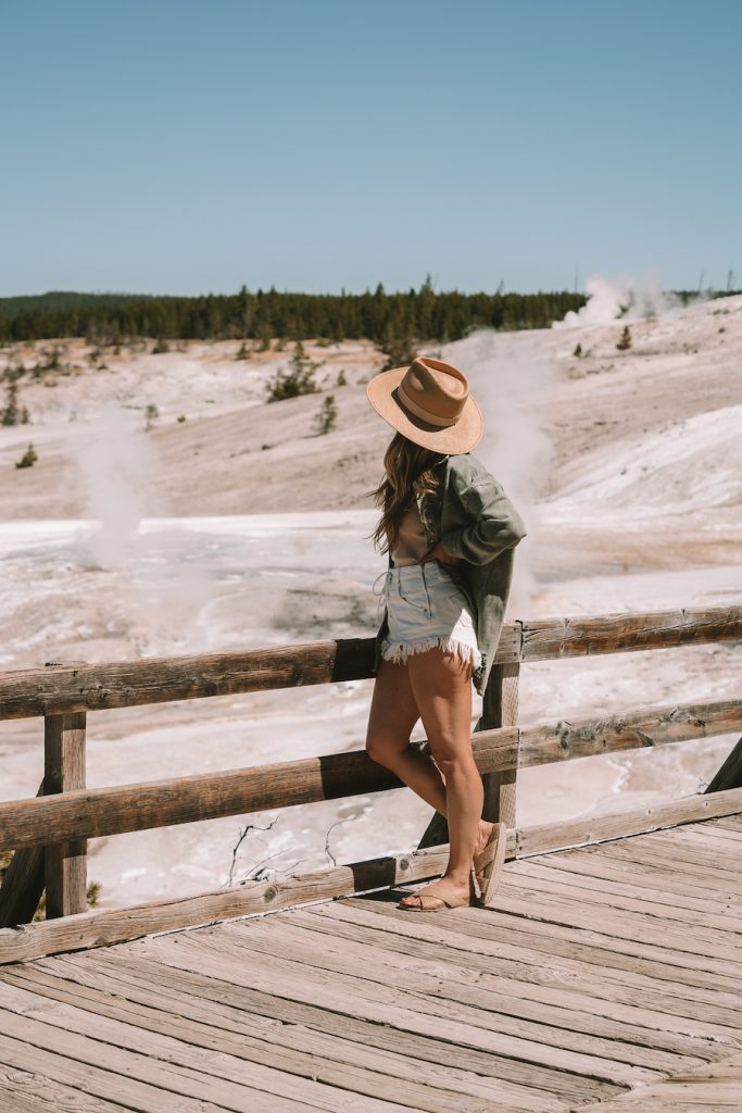 Michelle Halpern standing looking out over the Norris Geyser Basin in Yellowstone