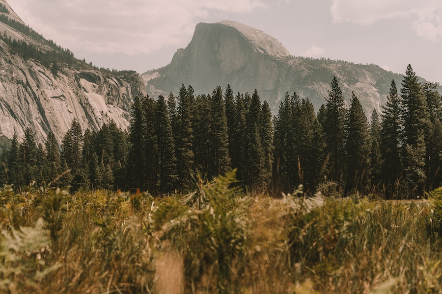 Cook's Meadow in Yosemite National Park