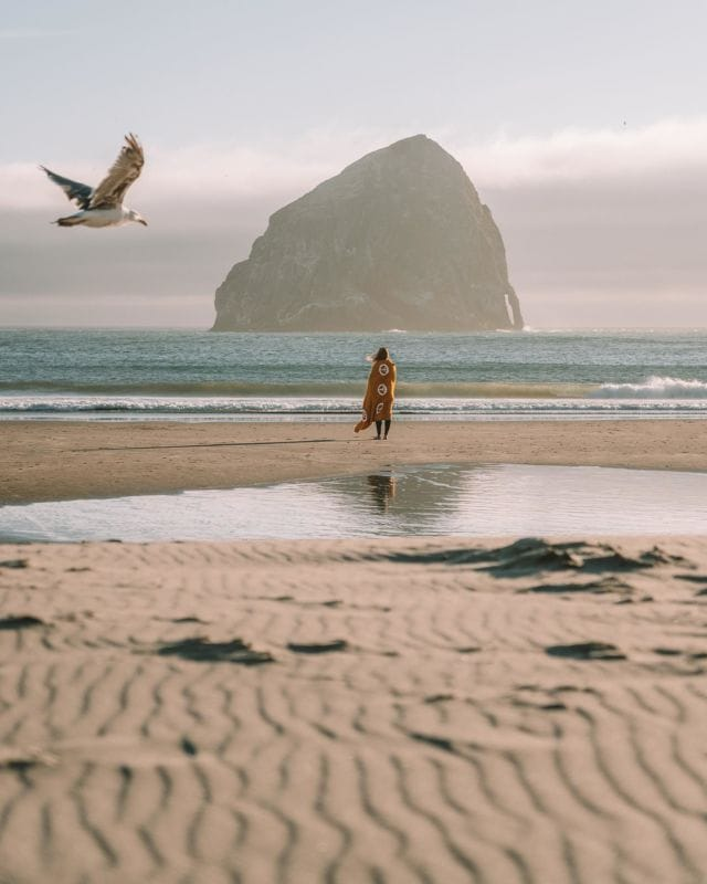 This was my first official trip to the PNW and wow did it remind me so much of growing up in Maine. The rocky coastline, the crisp morning air, the seafood 🦪, the quaint little coastal towns. I've definitely lost my ability to withstand the freezing temperatures, but exploring Oregon still felt like a little slice of home. This was one of my favorite beaches we visited the whole trip. Can't wait to show you more of beautiful Oregon 💛Have you guys been?? Is it on your bucket list?